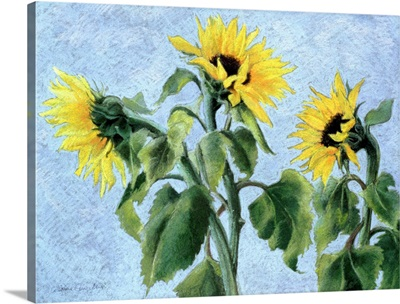 Sunflowers, 1996