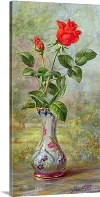 The Crimson Rose, a Messenger of Love