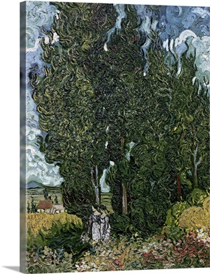 The cypresses, c.1889 90