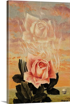 The Enchanted Domain, Rose, c.1957