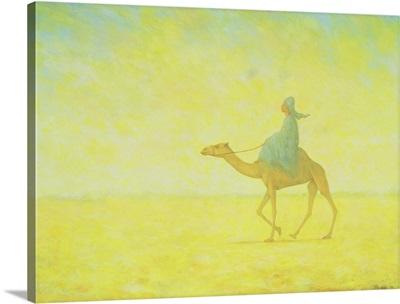 The Journey, 1993