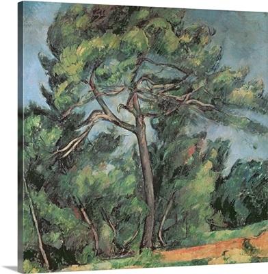 The Large Pine, c.1889