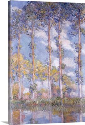 The Poplars, 1881