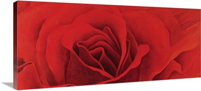 The Rose, in the Festival of Light, 1995
