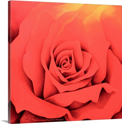 The Rose in the Festival of Light, 2000