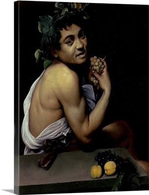 The Sick Bacchus, 1591