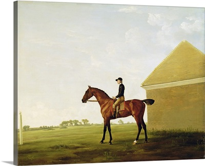 Turf, c.1765