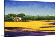 Tuscan Landcape, 2010 (oil on board)