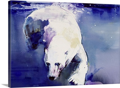 Underwater Bear, 1999