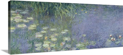 Waterlilies: Morning, 1914 18 (left section)