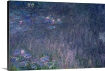 Waterlilies: Reflections of Trees, detail from the left hand side, 1915 26