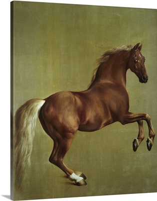 Whistlejacket, 1762