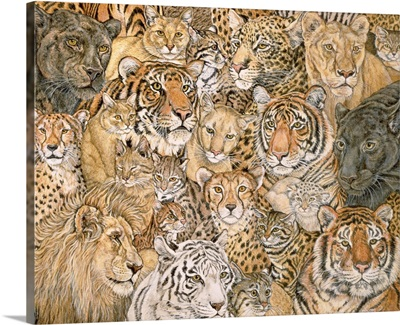 Wild Cat-Spread, 1992