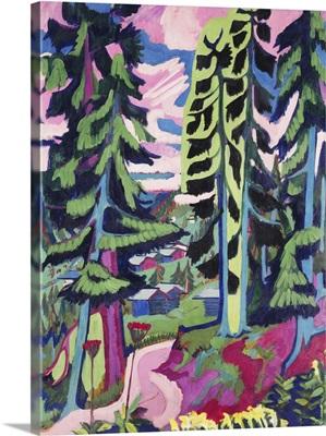 Wild Mountain; Wildboden, 1927-1928