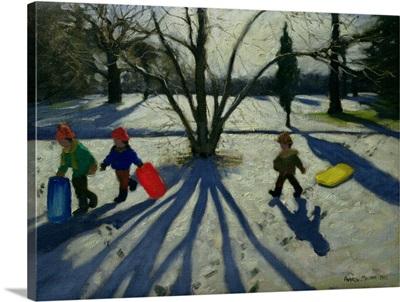 Winter, Markeaton Park, Derby