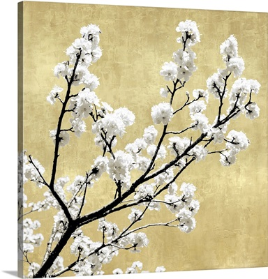 Blossoms on Gold II
