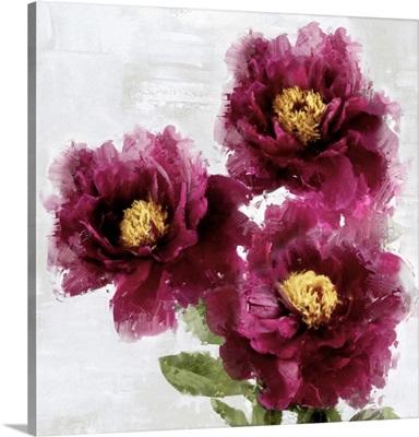 Burgundy Bloom II