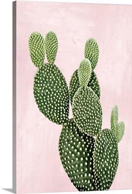 Cactus on Pink V
