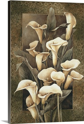 Golden Calla Lilies