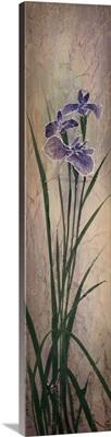 Iris Panels l