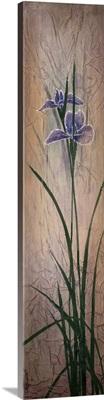 Iris Panels ll
