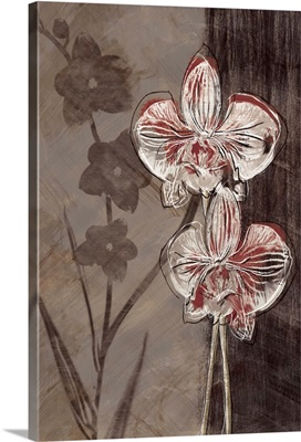 Orchid Sketch I