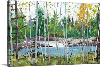 Oxtounge Rapids