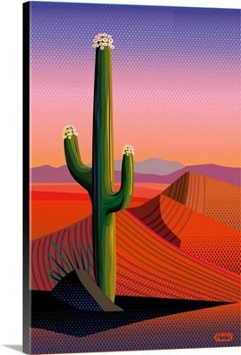Saguaro Blossom Sunset