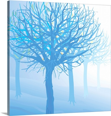 Trees in Fog (Square)