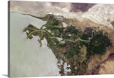 An eruption of green life where water slows enough for it to take hold, in Africa