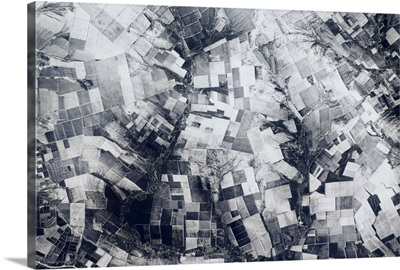 Crazed patchwork of farms in Central Asia