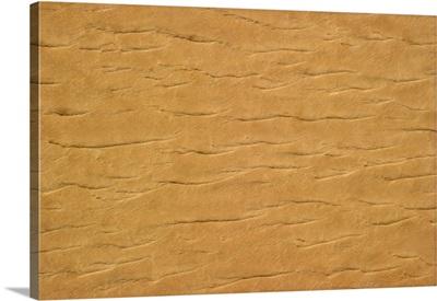 The dry folded skin of the Sahara desert