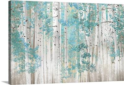 Birch Trees T