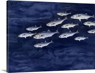 Fish On Indigo