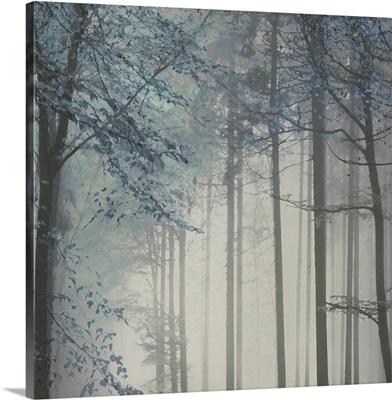 Tree Path Blue