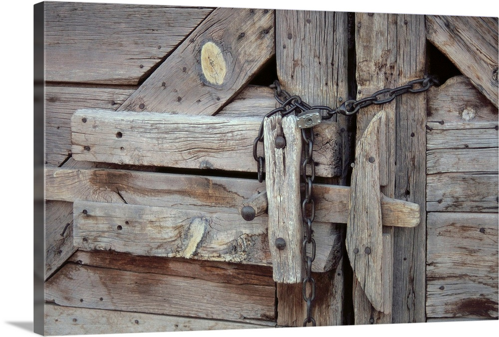 Chains And Lock On Weathered Barn Door. Canvas