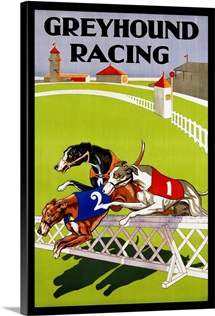 Greyhound Racing Poster