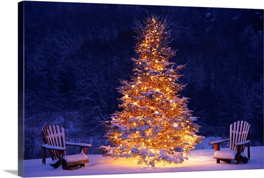 snow covering adirondack chairs by lit christmas tree - Decorating Adirondack Chairs For Christmas