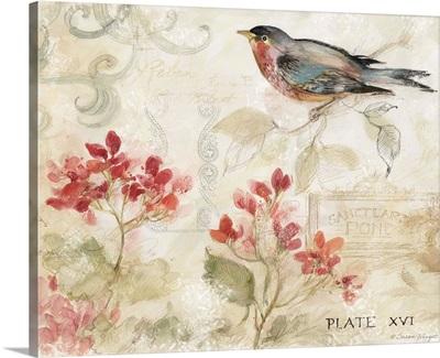 Bird with Geraniums