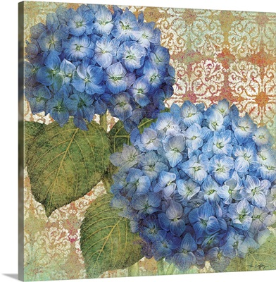 Blue Hydrangeas, Orange