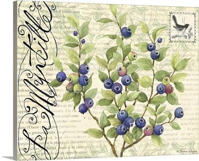 Botanical Blueberries