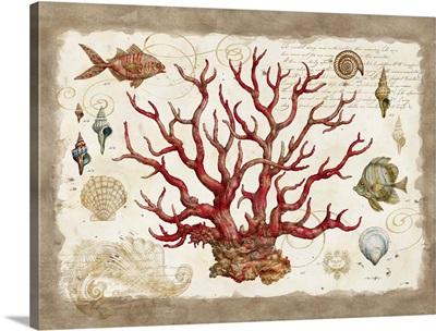 Botanical Coral