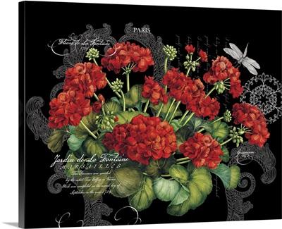 Botanical Geraniums