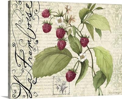 Botanical Raspberries