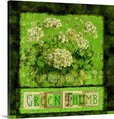 Green Geraniums