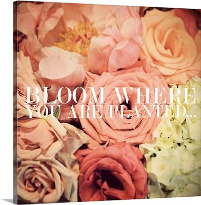 Inspiration All Around - Pink Bouquet