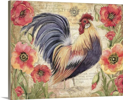 Poppy Rooster