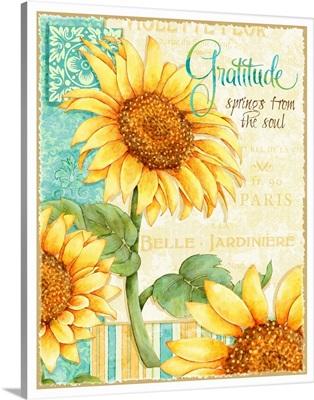 Sunflowers - Gratitude