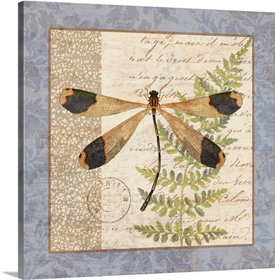 Vintage Hydrangea - Dragonfly