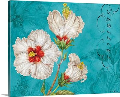 White Hibiscus on Blue
